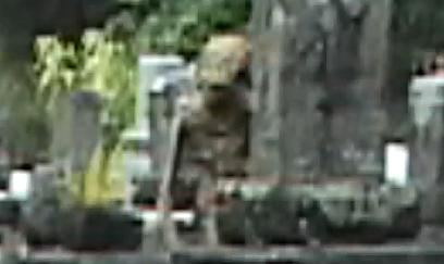 Un extraterestru a fost filmat într-un cimitir vechi
