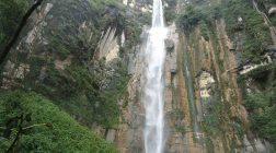 Descoperire senzaţională în jungla peruană